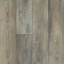 Shaw Floors Vinyl Residential Mountainside HD Tempesta 00594_VH549