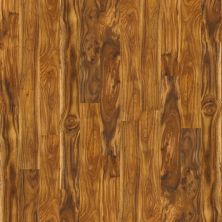 Shaw Floors Nfa HS New Haven Natural Acacia 00294_VH801