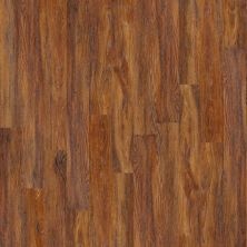 Shaw Floors Nfa HS New Haven Warm Hickory 00621_VH801