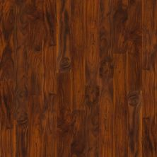 Shaw Floors Nfa HS New Haven Rich Acacia 00683_VH801