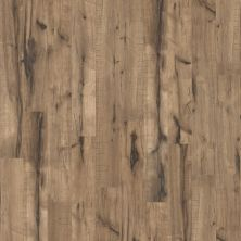 Shaw Floors Nfa HS Millcreek Hickory Peavey Grey 00543_VH802