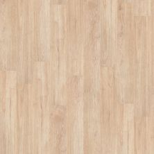 Shaw Floors Resilient Property Solutions Modernality 12plank Sidewalk 00126_VPS42