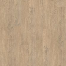 Shaw Floors Vinyl Property Solutions Modernality 12plank Ferry 00529_VPS42
