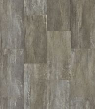 Shaw Floors Resilient Property Solutions Easy Inspiration Water Chestnut 00543_VPS51