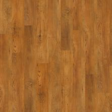 Shaw Floors Vinyl Property Solutions Silva Antique Chestnut 00230_VPS54