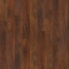 Shaw Floors Vinyl Property Solutions Silva Warm Chestnut 00710_VPS54