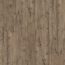 Shaw Floors Vinyl Property Solutions Easy Step Plank Sagebrush 00542_VPS90
