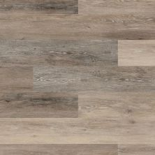 Shaw Floors Vinyl Residential Virtuoso 7″ Blackstone Oak 00707_VV024