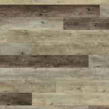 Shaw Floors 50lvmw Design Mt 5″ Exposition Oak 00017_VV028