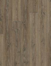 Shaw Floors Resilient Residential COREtec Plus Plank HD Sherwood Rustic Pine 00643_VV031