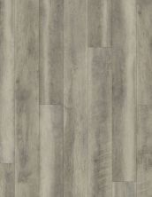 Shaw Floors Vinyl Residential COREtec Plus Plank HD Mont Blanc Driftwood 00652_VV031