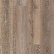 Resilient Residential COREtec Plus Premium 9″ Alford Oak 02910_VV457