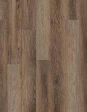 Shaw Floors Resilient Residential Galaxy Whirlpool Oak 02060_VV465