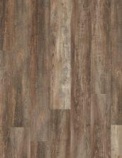 Vinyl Residential COREtec Pro Plus XL 7″ Casablanca Pine 01651_VV490