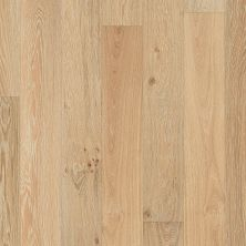 Shaw Floors Resilient Residential COREtec Wood- 12 MM Linden Oak 01733_VV572