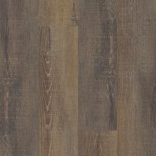Vinyl Residential COREtec – One Plus Jericho Oak 50006_VV585