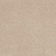 Shaw Floors Roll Special Xv124 White Fox 00106_XV124
