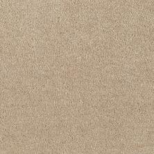 Shaw Floors Roll Special Xv124 Warm Stone 00744_XV124