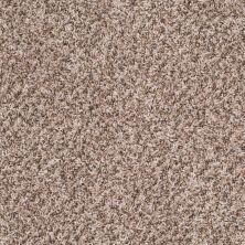 Shaw Floors Roll Special Xv261 Canvas 00120_XV261
