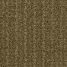 Shaw Floors Roll Special Xv284 Organic Leaf 00300_XV284