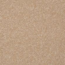 Shaw Floors Roll Special Xv291 I 12′ Sugar Cookie 00105_XV291