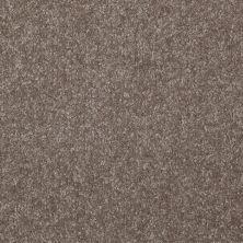 Shaw Floors Roll Special Xv291 I 12′ Field Stone 00111_XV291