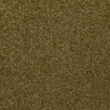 Shaw Floors Roll Special Xv291 I 12′ Green Apple 00303_XV291