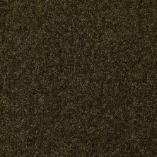 Shaw Floors Roll Special Xv291 I 12′ Pine 00304_XV291