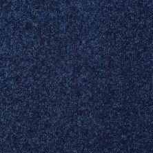Shaw Floors Roll Special Xv291 I 12′ Cadet 00402_XV291