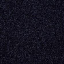 Shaw Floors Roll Special Xv291 I 12′ Uniform 00404_XV291