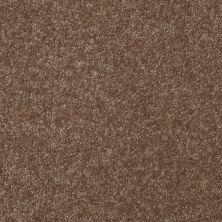 Shaw Floors Roll Special Xv291 I 12′ Jute 00703_XV291