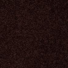 Shaw Floors Roll Special Xv291 I 12′ Dark Roast 00709_XV291
