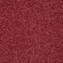 Shaw Floors Roll Special Xv291 I 12′ Blush 00802_XV291