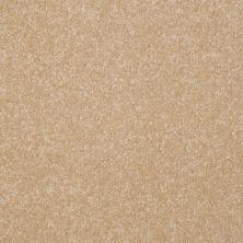 Shaw Floors Roll Special Xv292 II 12′ Silk 00104_XV292
