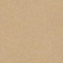Shaw Floors Roll Special Xv292 II 12′ Sugar Cookie 00105_XV292