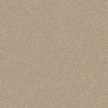 Shaw Floors Roll Special Xv292 II 12′ Fresco 00109_XV292