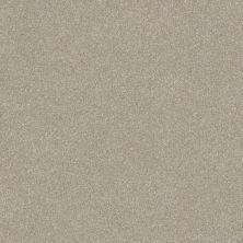 Shaw Floors Roll Special Xv292 II 12′ Masonry 00110_XV292