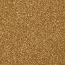 Shaw Floors Roll Special Xv292 II 12′ Golden Rod 00202_XV292