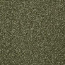 Shaw Floors Roll Special Xv292 II 12′ Sage Leaf 00302_XV292