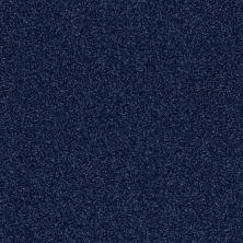Shaw Floors Roll Special Xv292 II 12′ Cadet 00402_XV292