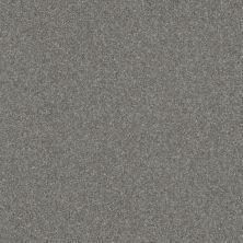 Shaw Floors Roll Special Xv292 II 12′ Pewter 00501_XV292