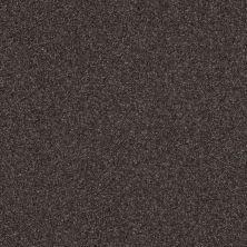 Shaw Floors Roll Special Xv292 II 12′ Ship Yard 00502_XV292