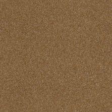 Shaw Floors Roll Special Xv292 II 12′ Belt Buckle 00702_XV292