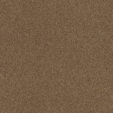 Shaw Floors Roll Special Xv292 II 12′ Jute 00703_XV292