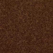 Shaw Floors Roll Special Xv292 II 12′ Patina 00707_XV292