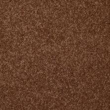 Shaw Floors Roll Special Xv292 II 12′ Toasty 00710_XV292