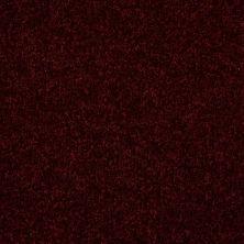 Shaw Floors Roll Special Xv292 II 12′ Bordeaux 00805_XV292