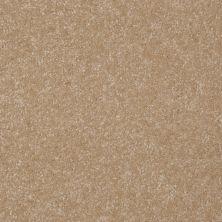 Shaw Floors Roll Special Xv293 III 12′ Classic Buff 00108_XV293