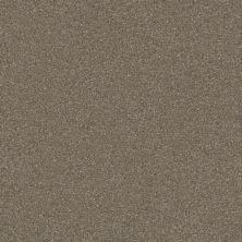 Shaw Floors Roll Special Xv293 III 12′ Field Stone 00111_XV293