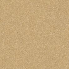 Shaw Floors Roll Special Xv293 III 12′ Butter 00200_XV293